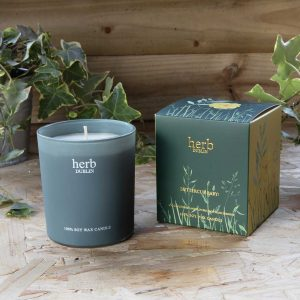 Chapter One Herb Dublin Buttercup Baby Candle